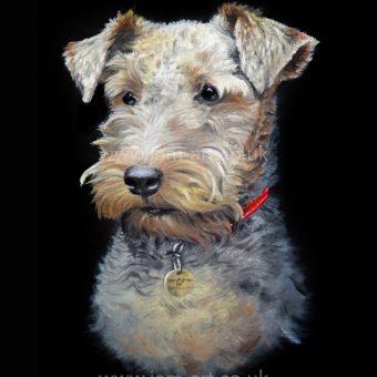 dog pet portrait artist north east